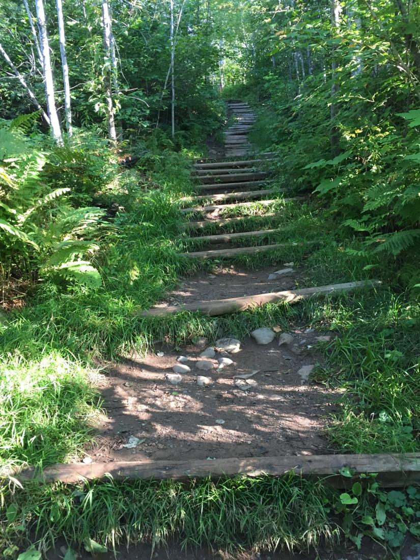Moose Mt Marathon Stairway to